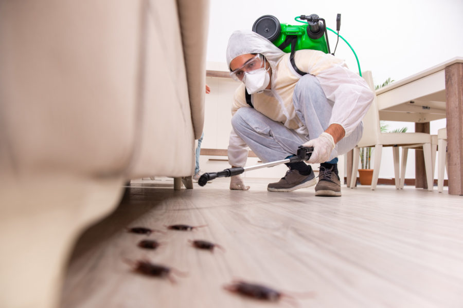 3 Key Benefits of Home Inspections