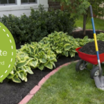 HOW TO MAINTAIN YOUR LANDSCAPE